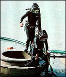 80's Divers